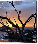 Sunrise At Driftwood Beach 5.2 Acrylic Print