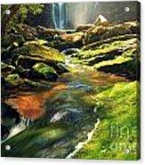 Sunrise At Elakala Falls Acrylic Print