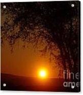 Sunrise At Maryhille  Acrylic Print