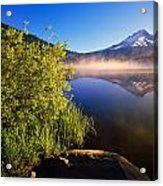 Sunrise Fog On Trillium Lake Acrylic Print