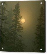 Sunrise Through The Fog 1 Acrylic Print