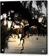 Sunset At Blue Springs Acrylic Print