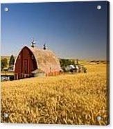 Sunset Barn And Wheat Field Steptoe Acrylic Print