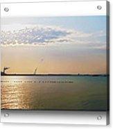 Sunset Geese Acrylic Print