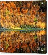 Sunset Glow On The Pond Acrylic Print