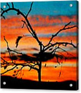 Sunset In Nevada Acrylic Print