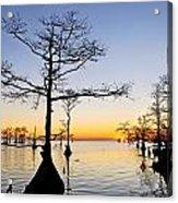Sunset On Lake Mattamuskeet Acrylic Print