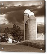 Sunset On The Farm S Acrylic Print by David Dehner