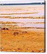 Sunset On The Mud Flats Acrylic Print
