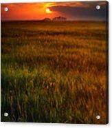 Sunset Over Field Acrylic Print