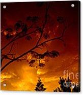 Sunset Over Florida Acrylic Print