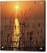 Sunset Over Pacific Acrylic Print
