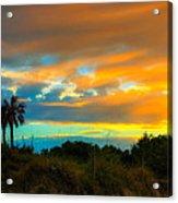 Sunset Palm Folly Beach  Acrylic Print by Jenny Ellen Photography