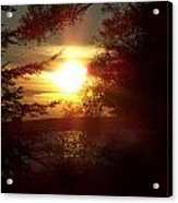 Sunset Peaking Through The Trees Acrylic Print
