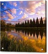 Sunset Reflection On A Pond, Portland Acrylic Print by Craig Tuttle