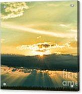 Sunset Sunbeams Acrylic Print
