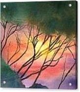 Sunset Through The Trees Acrylic Print