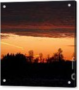 Sunset Warmth Acrylic Print