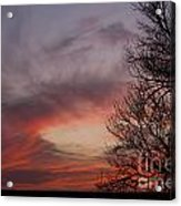 Sunset With Trees Acrylic Print