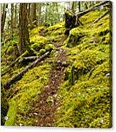 Sunshine Coast Trail Acrylic Print