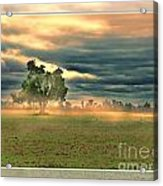 Sunshine On A Cloudy Day Acrylic Print