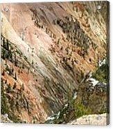 Sunshine On Grand Canyon In Yellowstone Acrylic Print