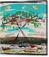 Super Summer Day-homage To Howard Hodgkin Acrylic Print