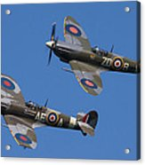 Supermarine Spitfires Acrylic Print