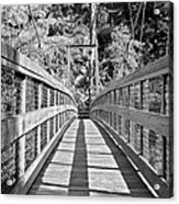 Suspension Bridge Acrylic Print