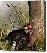 Swamp Lycaenops Acrylic Print