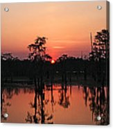 Swamp Sunset Acrylic Print