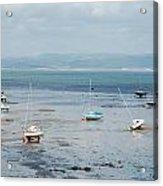 Swansea Bay Sailboats Acrylic Print