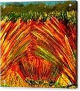 Sweeping Fields Acrylic Print