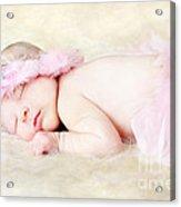 Sweet Baby Girl Acrylic Print by Darren Fisher