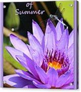 Sweetness Of Summer Acrylic Print
