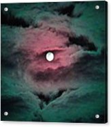 Swim To The Moon Acrylic Print