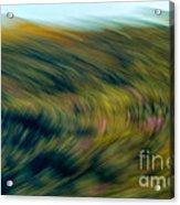 Swirling Field Acrylic Print