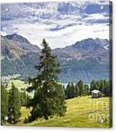 Swiss Alps Acrylic Print