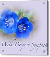 Sympathy Card - Blue Wildflower Acrylic Print