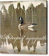 Sympathy Greeting Card - Canada Goose Acrylic Print