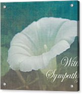 Sympathy Greeting Card - Wild Morning Glory - Bindweed Acrylic Print