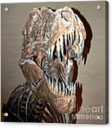 T Rex Acrylic Print