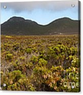 Table Mountain National Park Acrylic Print