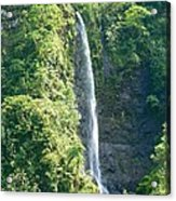 Tahitian Waterfall Acrylic Print