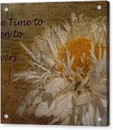 Take Time Acrylic Print