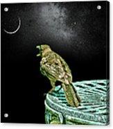 Talking To The Moon Acrylic Print