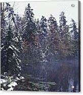 Tall Pines By A Lake Acrylic Print by David Chapman
