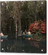 Tannic Acid From Old Trees Stains Water Acrylic Print