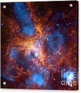 Tarantula Nebula 30 Doradus Acrylic Print