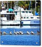 Tarpon Springs Florida Acrylic Print